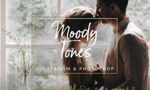 Moody Tones Wedding LR PS Filters 1329496
