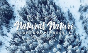 Natural Nature Lightroom Presets 3881732