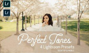 Perfect Tones Lightroom Presets 3979543