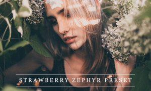 Strawberry zephyr - Lightroom preset 1237374