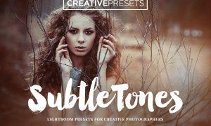 SubtleTones 10 Lightroom Presets 311349