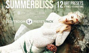 Summerbliss Lightroom Preset Pack 773119