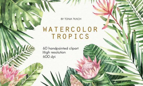 Watercolor Tropics 2350524