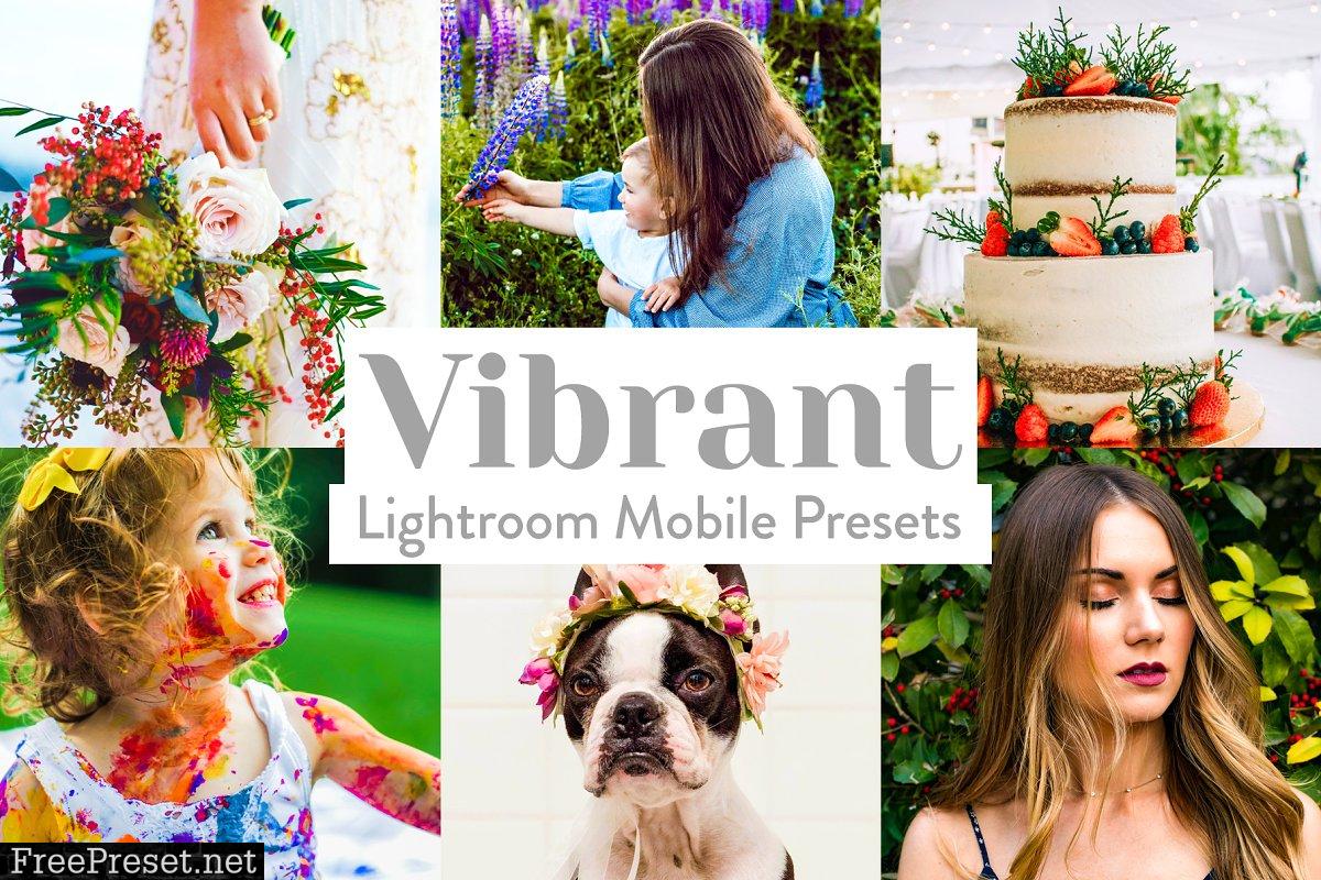 Vibrant Lightroom Presets Mobile 4026024