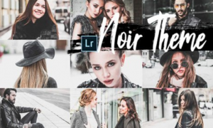 05 Noir Theme Mobile Lightroom Presets 2362239