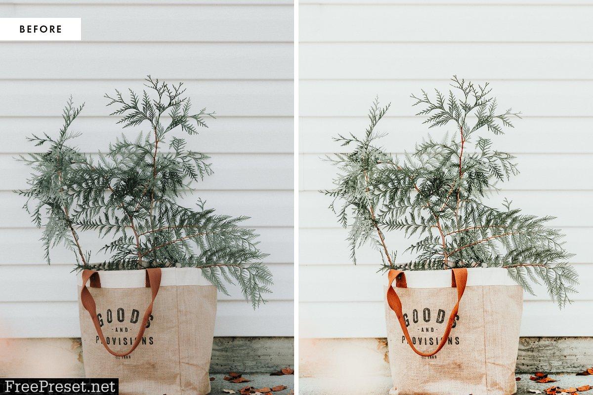 Christmas Blogger Lightroom presets 4385086