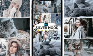 Silver Mood Photoshop Actions 25147155