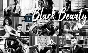05 Black Beauty Desktop Lightroom Preset 2420554