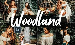 05 Woodland Lightroom Presets and ACR 2542463