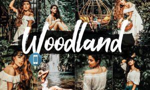 05 Woodland Mobile Lightroom Presets 2542471
