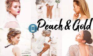 09 Peach & Gold Mobile Lightroom Presets 2536514