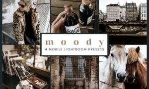 4 Mobile Lightroom Presets   Moody 2651919