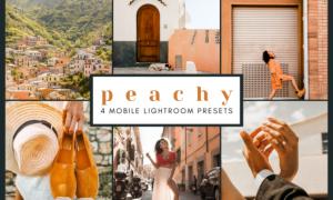 4 Mobile Lightroom Presets | Peachy 2651897