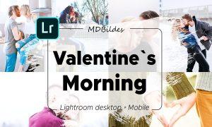 5 Lightroom Presets, Valentines Day 4423211