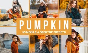 50 Pumpkin Orange Lightroom Presets and LUTs