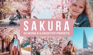 50 Sakura Pink Lightroom Presets and LUTs 4498892