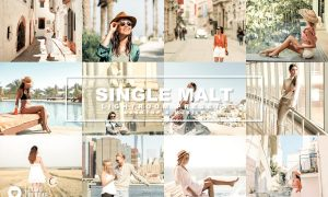 70. Single Malt Presets 4489496