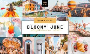 Bloomy June Lightroom Preset 3831604