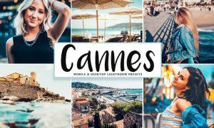 Cannes Mobile & Desktop Lightroom Presets