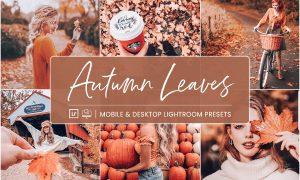 Lightroom Presets Autumn Leaves 4412823