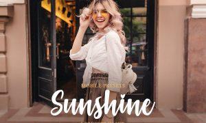 Sunshine Mobile Collection 4423353