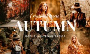 Autumn Lightroom Mobile Presets