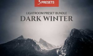 Dark Winter 3 LR Preset Bundle 178740