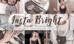 Insta Bright Mobile Lightroom Preset 4488136