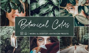 Lightroom Presets Botanical Colors 4410278