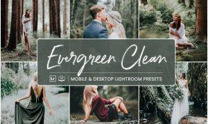 Lightroom Presets Evergreen Clean 4412831