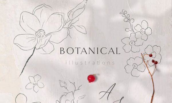 Line Drawing Botanicals, Plants, Florals 2VBNWNN