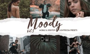 Moody Lightroom Presets Vol. 3
