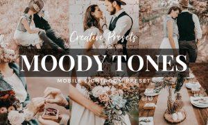 Moody Tones Mobile Lightroom Preset