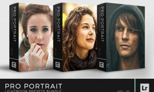 Pro Portrait Lightroom Preset Bundle 1344384