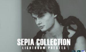 Sepia Collection Lightroom Presets