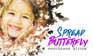 Spread Butterfly Effect