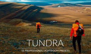 Tundra Lr Presets