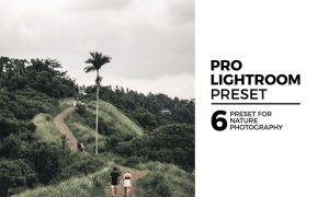 6 Nature Lightroom Preset