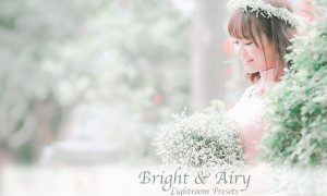 Bright & Airy Presets for Lightroom 4566991