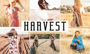 Harvest Mobile & Desktop Lightroom Presets