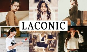 Laconic Mobile & Desktop Lightroom Presets