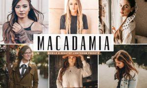 Macadamia Lightroom Presets Pack 3624116