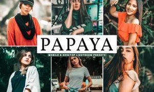 Papaya Mobile & Desktop Lightroom Presets