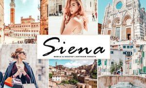 Siena Mobile & Desktop Lightroom Presets