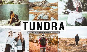 Tundra Lightroom Presets Pack 3628308