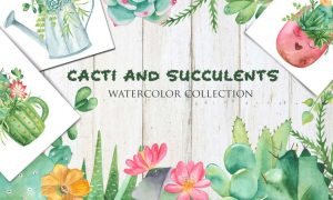 Watercolor Cacti and Succulents HLLGLTS