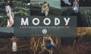 14 Moody Lightroom Presets 3974499