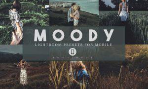 14 Moody Mobile Lightroom Presets 3983765