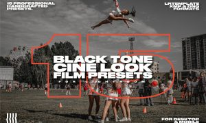 15 Black Tone Cine Look Film Presets 4539090