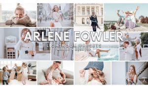 89. Arlene Fowler Presets 4626890